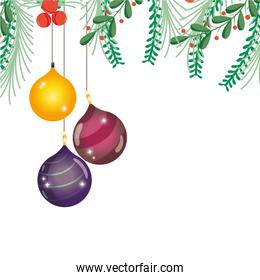 colorful merry christmas balls with branches leaves