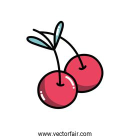 delicious cherry fruit with healthy nutrition