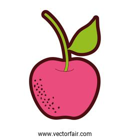 line color organic apple fruit with nutrition and vitamin