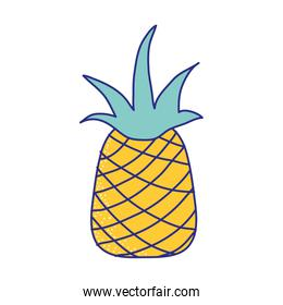 line color delicious pineapple fresh and healthy fruit
