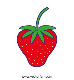 line color delicious strawberry fresh and organic fruit