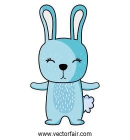 cute rabbit wild animal of the forest