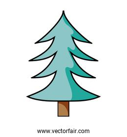 natural pine tree with trunk design