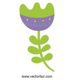 colorful beautiful flower with ornamental design and leaves