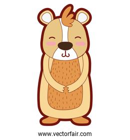 line color cute and smile bear wild animal