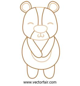 color line cute and shy bear wild animal