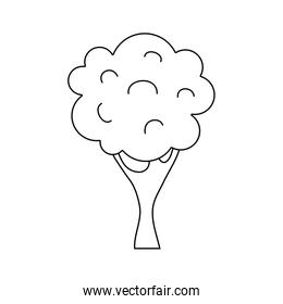 line nature tree with trunk and branch design