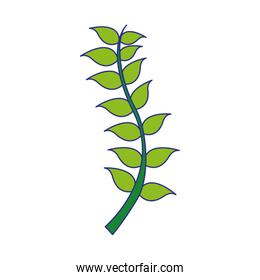 full color nature branches leaves plant design