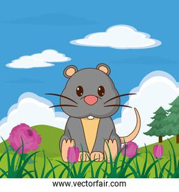 Mouse cute animal in landscape