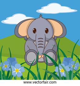 Elephant cute animal in landscape