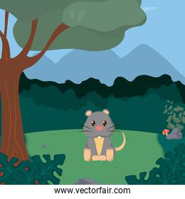 Mouse cute animals cartoons