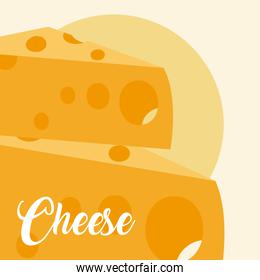 Cheese dairy food