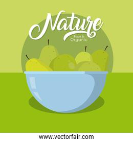 Pears nature fruits