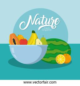 Delicious nature fruits