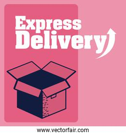 Express delivery service
