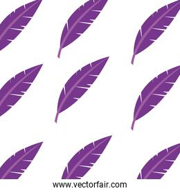 Isolated feather design
