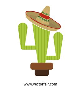 cactus with a hat
