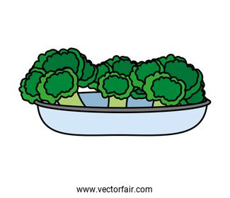 Isolated broccoli, design