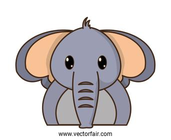 adorable elephant cute animal character