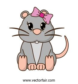 female mouse cute animal with ribbon bow