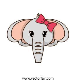 female elephant head cute animal