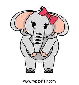 adorable female elephant animal with ribbon bow