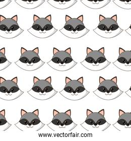 raccoon head cute animal character background