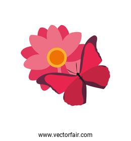 colofrul nice flowers with petals design and butterfly