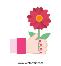 colorful woman hand with beautiful flower and petals