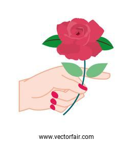 colorful woman hand with rose petals and leaves