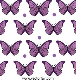 beauty butterfly style animal to the spring background