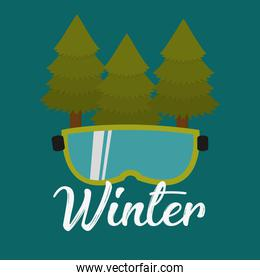 pines trees with glasses winter ski