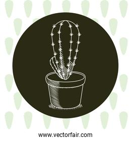 Cactus in pot hand drawn round icon