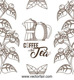Coffee and tea concept