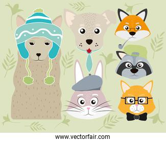 Cute animals cartoons collection