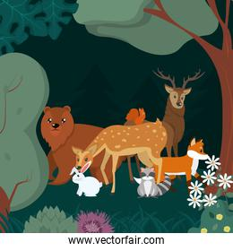Animals in te forest cartoons