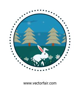 Rabbit in forest round icon