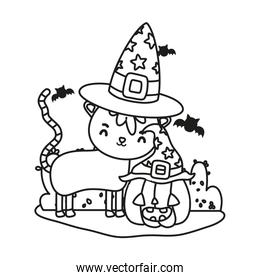 outline nice cat with pumpkin wearing hats and bats