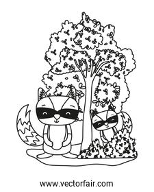 outline raccoons friends animals with bushes and tree