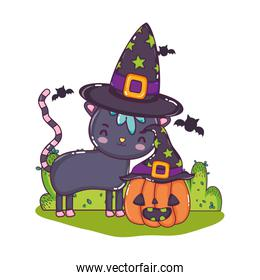 nice cat with pumpkin wearing hats and bats