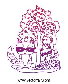 degraded outline raccoons friends animals with bushes and tree