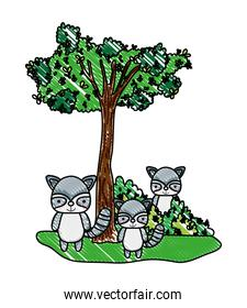 grated accoon friends animals with bushes and tree