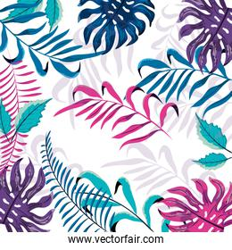exotic plants branches with cute leaves