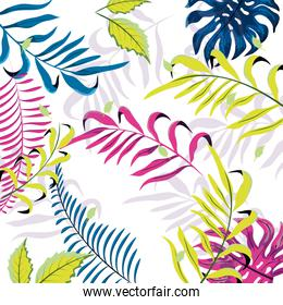 beauty plant branches with exotic leaves