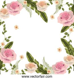 beauty roses with branches leaves background