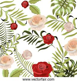 cute exotic roses with braches leaves