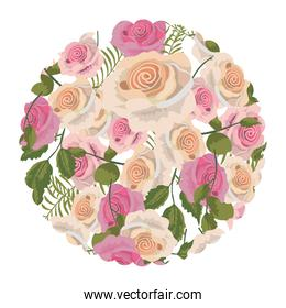 circle with tropical roses plant with leaves