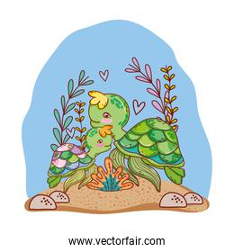 turtle family animals with seaweed plants