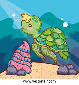 cute turtle animal with shell in the sea