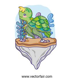 turtle animal in the stone with seaweed plants
